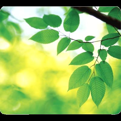 Egéralátét Fellowes Earth Series újrahasznosított levelek